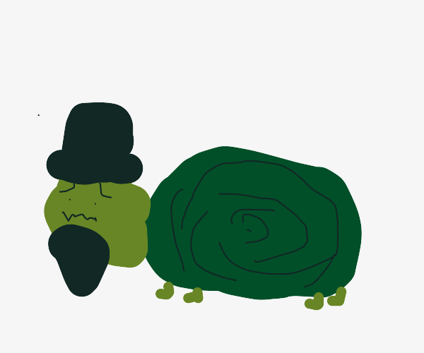 turtle with a beard and a hat worried