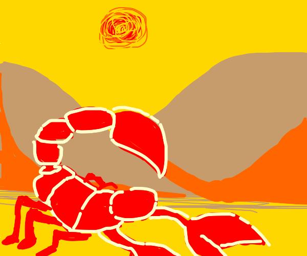 Scorpion Digging