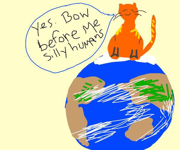 cat obtains global domination