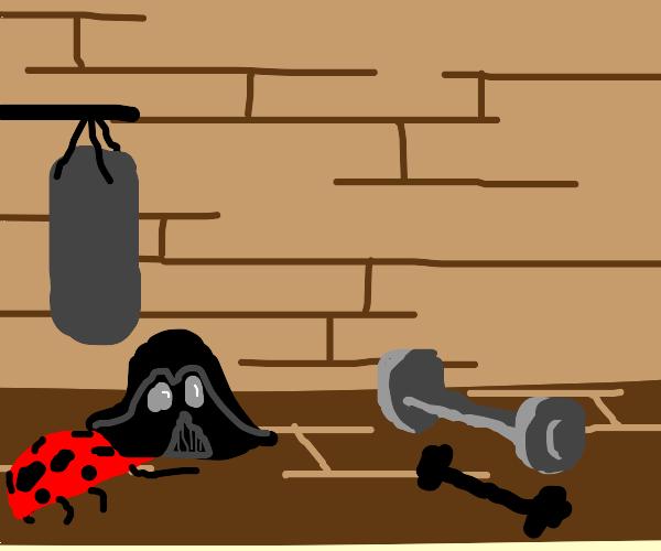 Darth Vader bug lifts weights