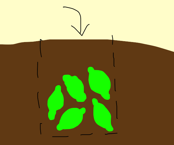 A lime pit
