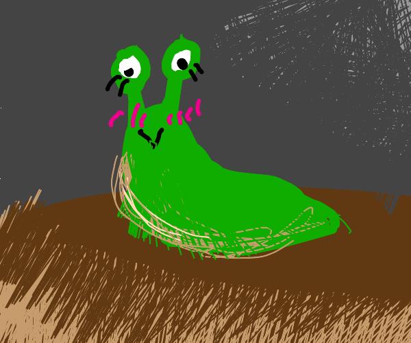Cute Slug