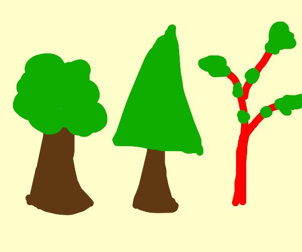 Different tree types
