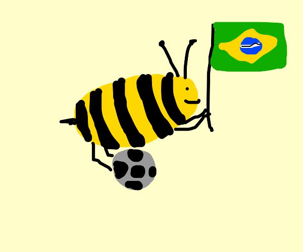 Brazil bee