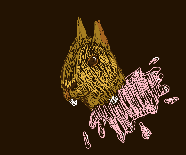 squirrel head