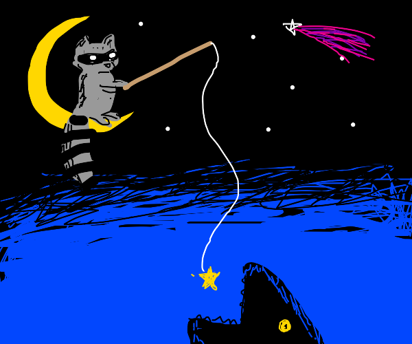 Raccoon fishing with a Star