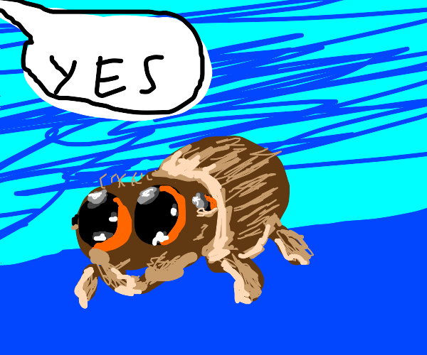 Yes cute spider