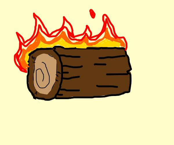 burning a log