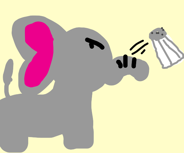 elephant is tough and throws salt