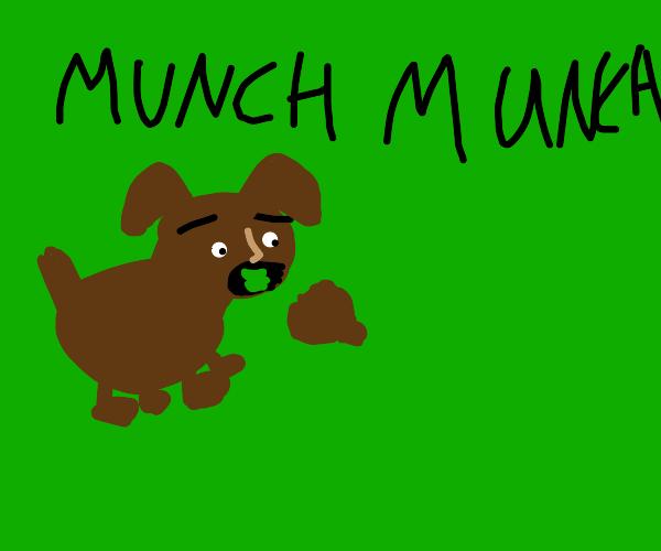 dog eats apart of the earth