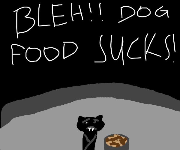 Bat hates dog food but has no choice