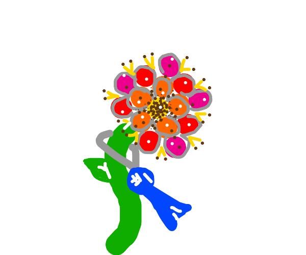 Award winning flower