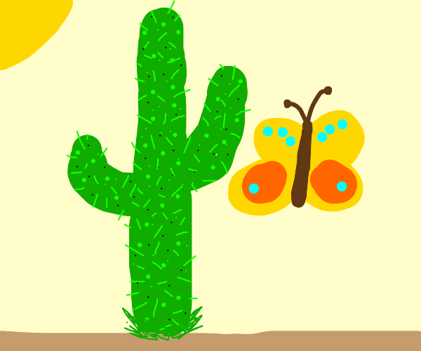 butterfly near cacti