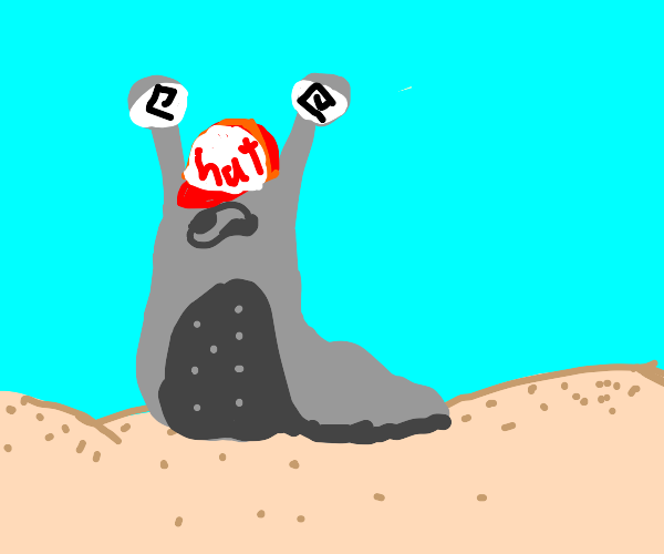 sea slug with red baseball cap on its head