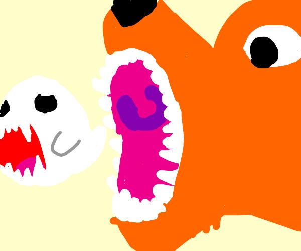 Fox running after a booo