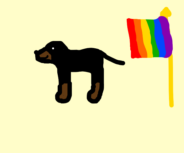 Dachshund supports gay rights