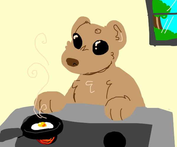 a bear cookin egg