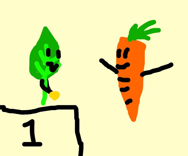 carrot apoints brazil as winner