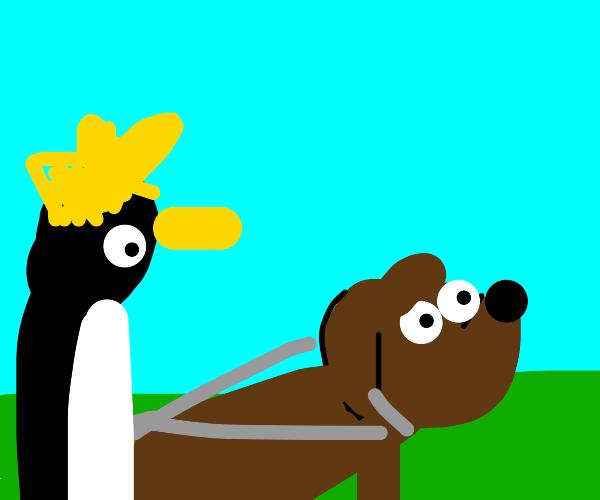 Dog pulling a penguin king
