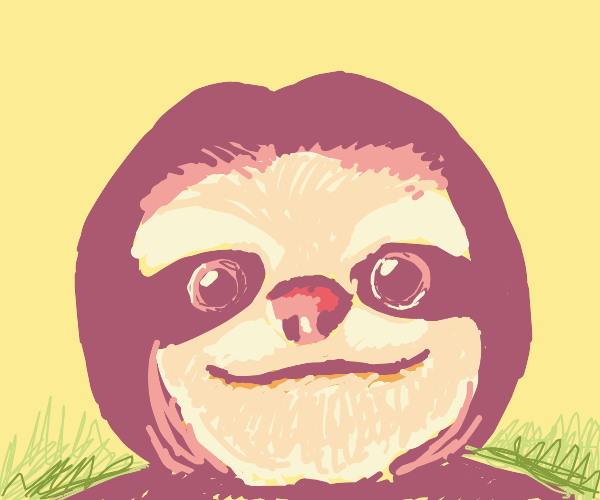 Drawing of a sloth
