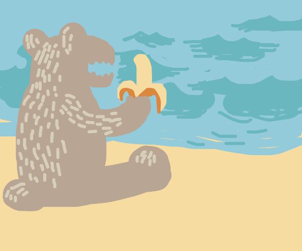 bear eating banana at beach