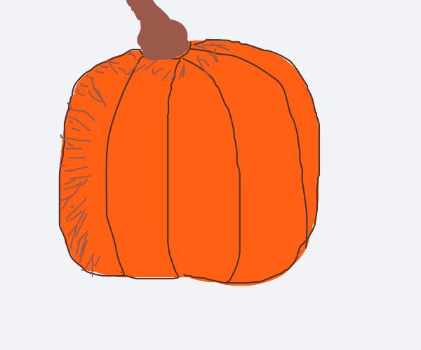 A detailed pumpkin