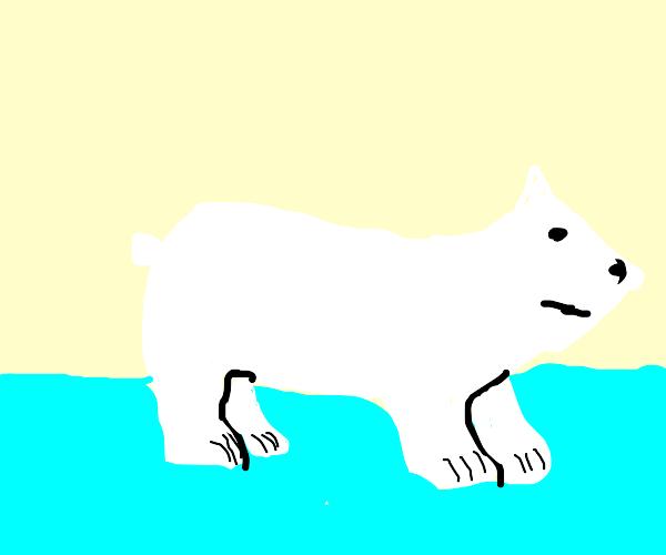 Polar bear has an arrow for a head