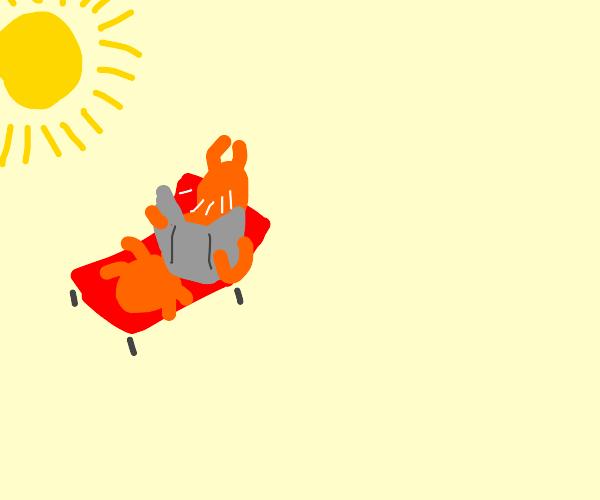 Orange ant sunbathing