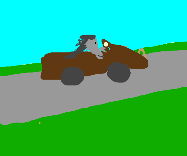 donkey driving a car