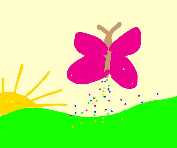 Butterfly poops rainbow sprinkles at dawn