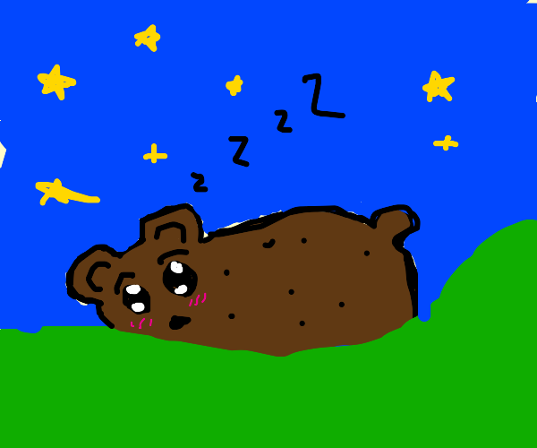 Cute black bear snoozes under the night sky