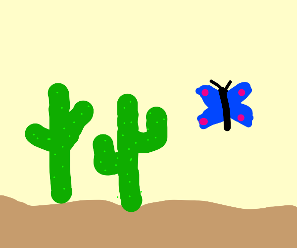Two cacti and a butterfly in the desert