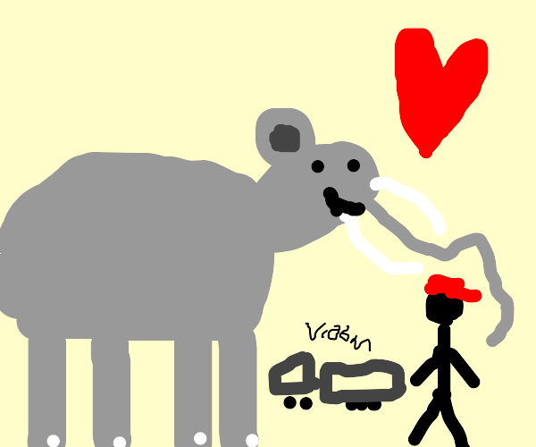 Elephant loves Truck Driver