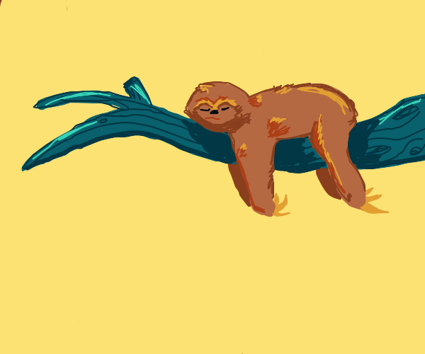 Cute sloth hanging tree