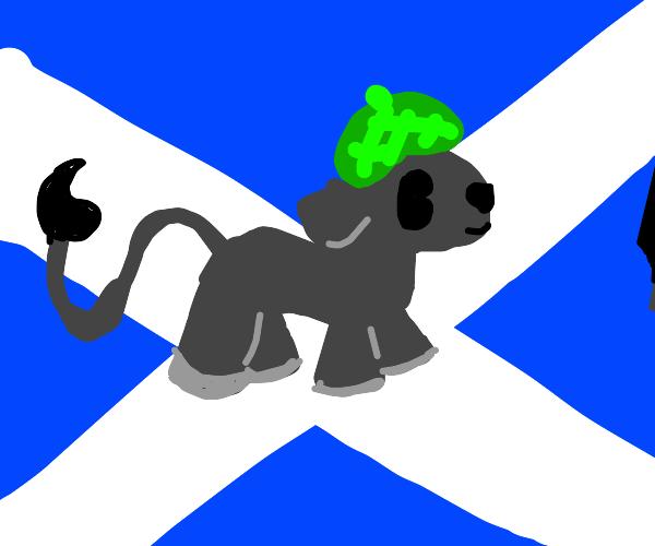 Scottish Donkey