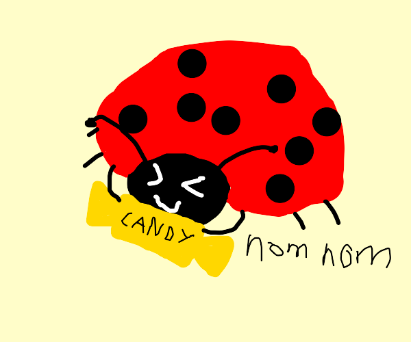 Ladybug nomming on candy wrapper