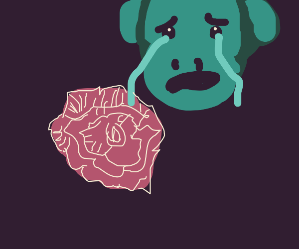 Red rose makes green monkey cry