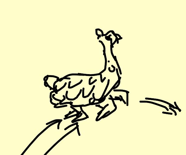 Llama Jumping