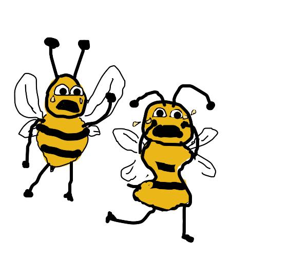 Heartbeereaking bee breakup