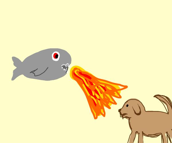 Piranha breaths fire on dog