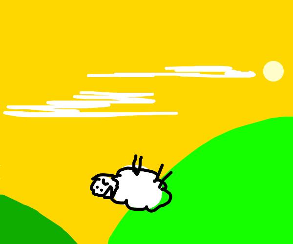 Sheep falls down a hill