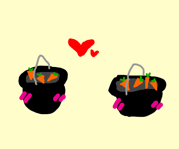 two pots cooking carrots are in love