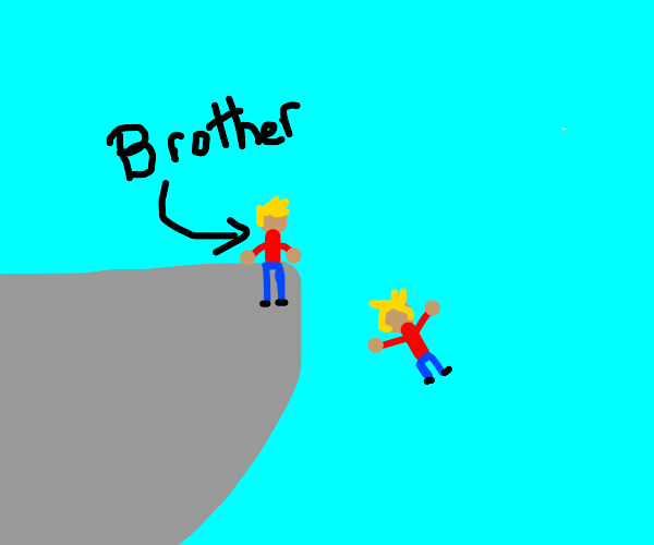 Brother Kicked Me Off a Cliff