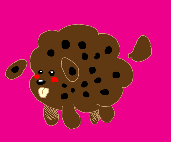fluffy cookie dog