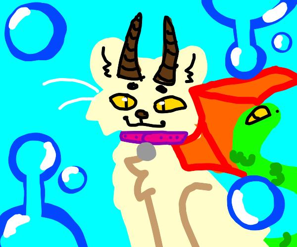 Pet Chimera