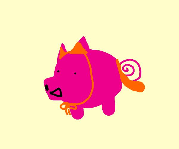 Pig is impostor cat