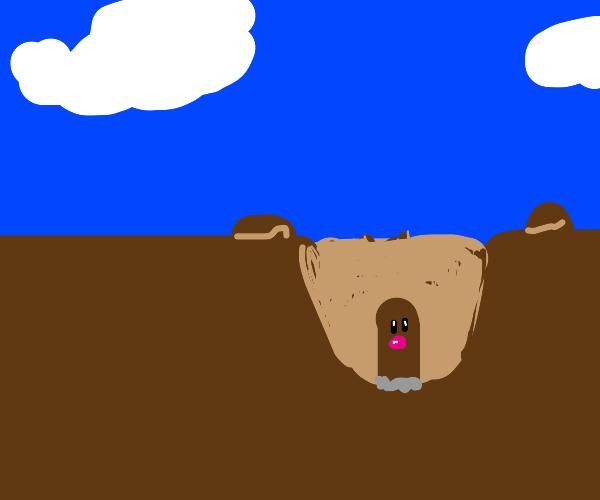 diglett stuck in hole
