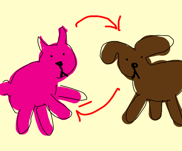 kittydog body swap
