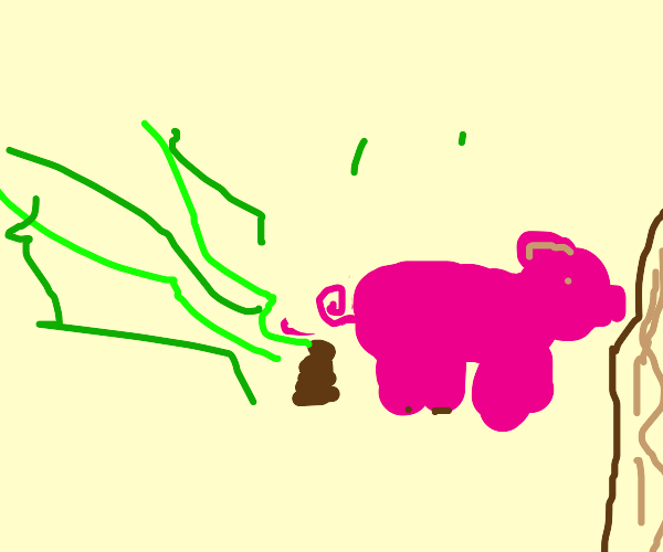 pig poo