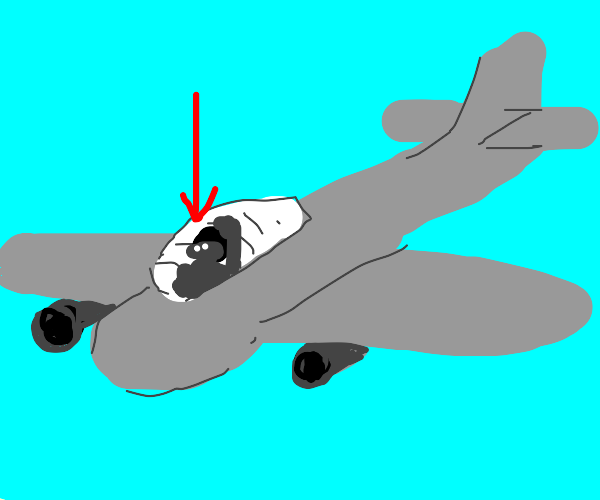Pilot in one person plane